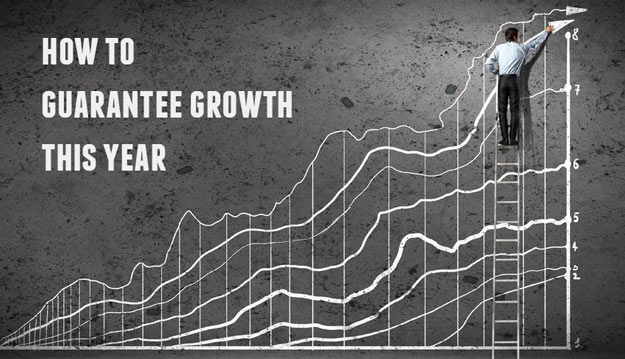 How To Guarantee Growth In Your business
