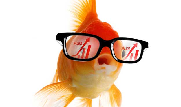 Grow business in goldfish glasses